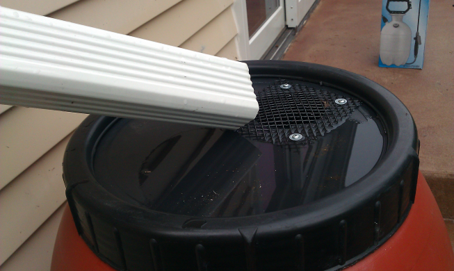 The downspout feeding the barrel