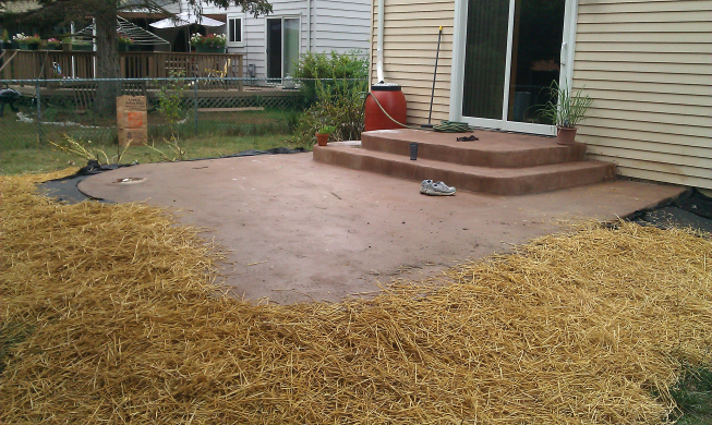 Patio with grass seed sown