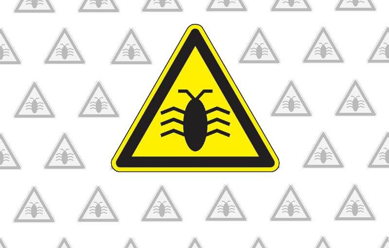 Why software bugs exist and how you can help