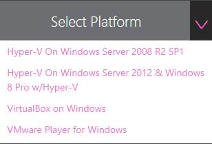 Select virtual machine platform